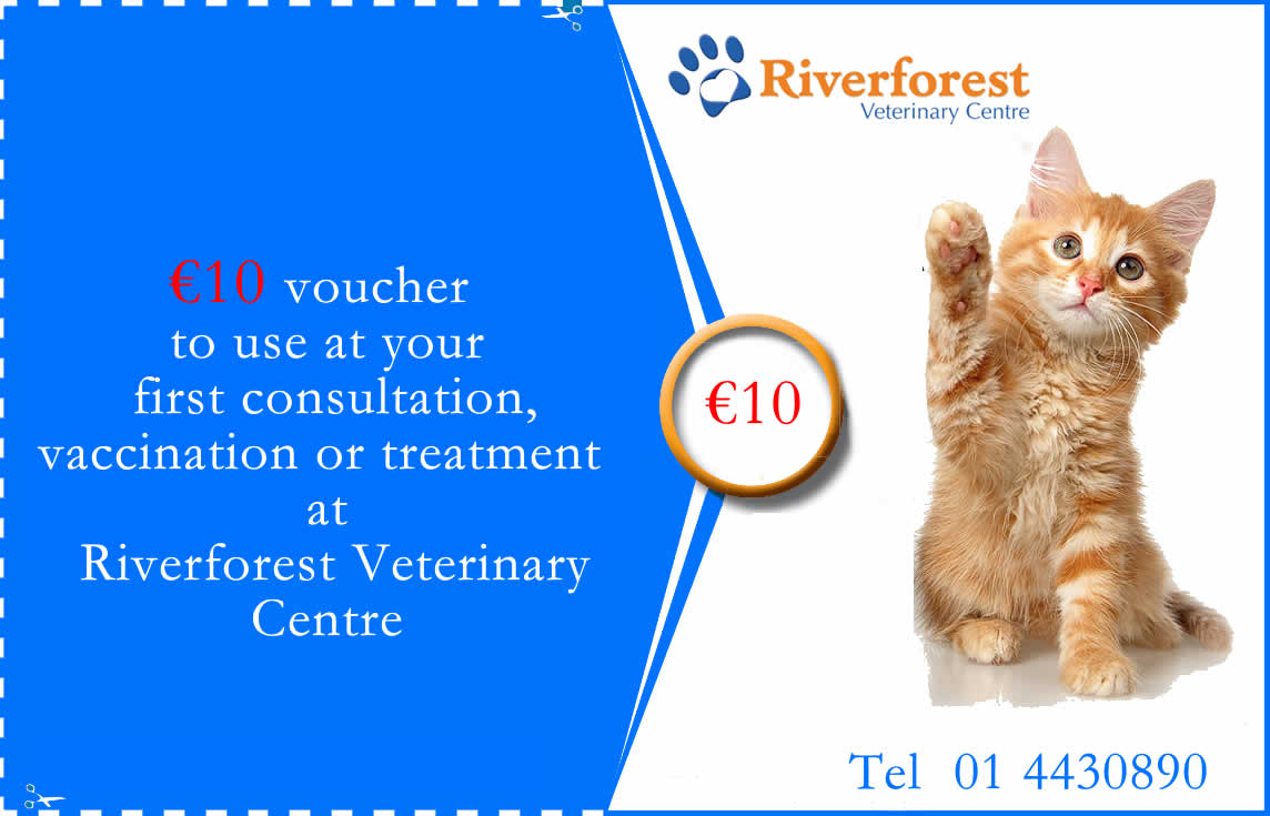 voucher at Riverforest vets